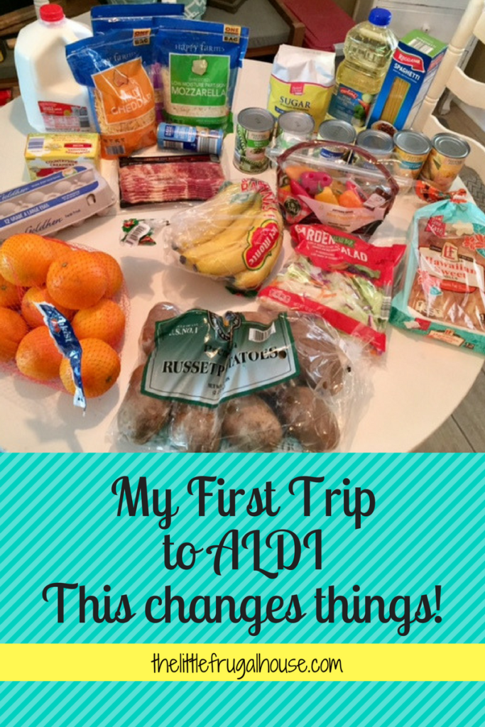 My First Trip to ALDI - This Changes Things! thelittlefrugalhouse.com