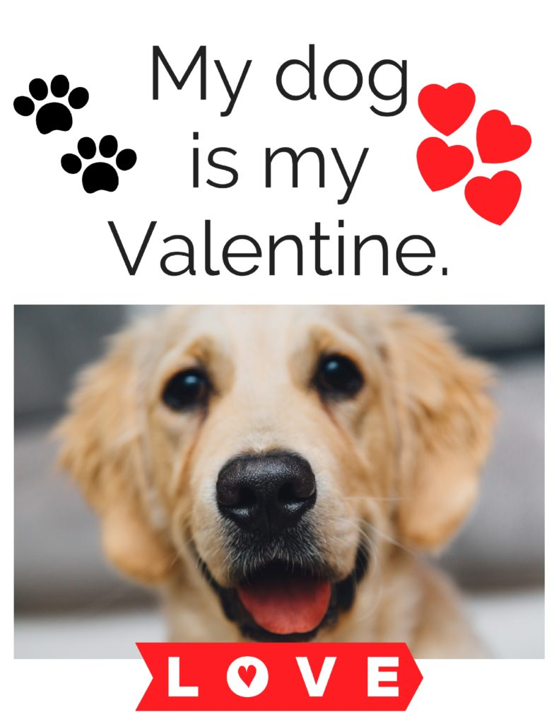 5 free valentine 39 s day printables the little frugal house - Valentines day pictures with puppies ...