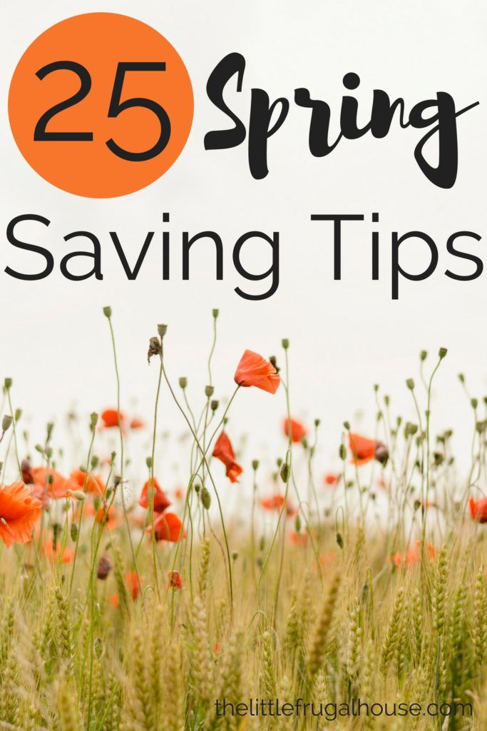 Warm weather brings a lot of to do's, fun activities, and a lot of possible budget busters. Use these 25 spring saving tips to stay in budget!